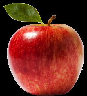 14 weeks - apple